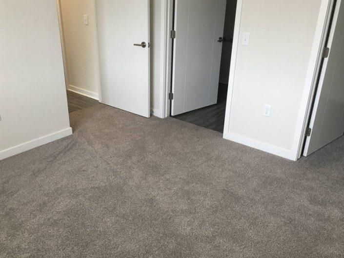 Shaw Go For It Carpet Granite