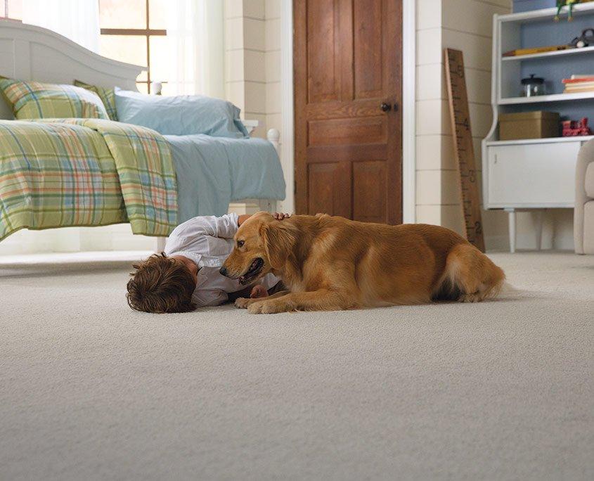 SmartStrand Silk Reserve Petproof Carpet