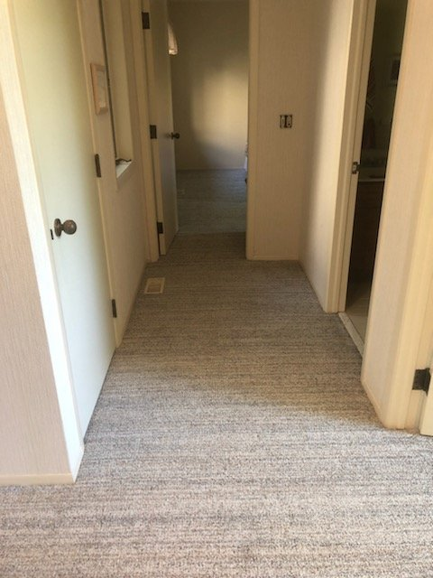 Carpet and Herringbone Coretec Install